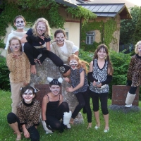 CATS in Gmunden