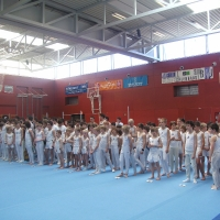 Landesmeisterschaften Geräteturnen 2011