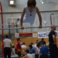 Landesmeisterschaften Geräteturnen 2012