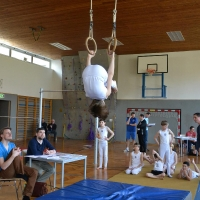 Bezirksmeisterschaften Geräteturnen in Bad Ischl 2013