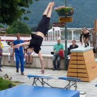 Gesundheitstag in Gmunden 2015