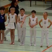 Landesmeisterschaften Geräteturnen in Traun 26. April 2015