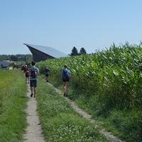 Jahnwanderung Grein a.d.Donau 2019